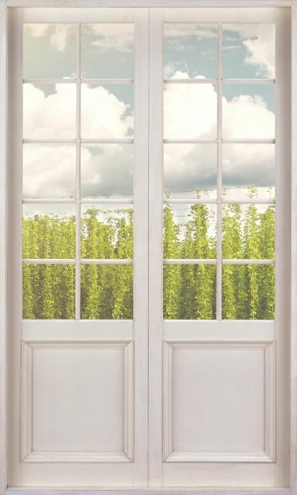 Fototapeta winylowa Białe drzwi - Plantacja - Widok przez drzwi