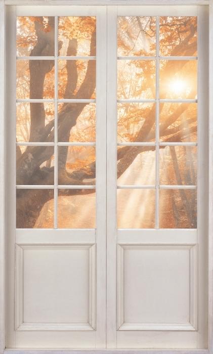 Fototapeta winylowa Białe drzwi - Drzewa i promienie słoneczne - Widok przez drzwi