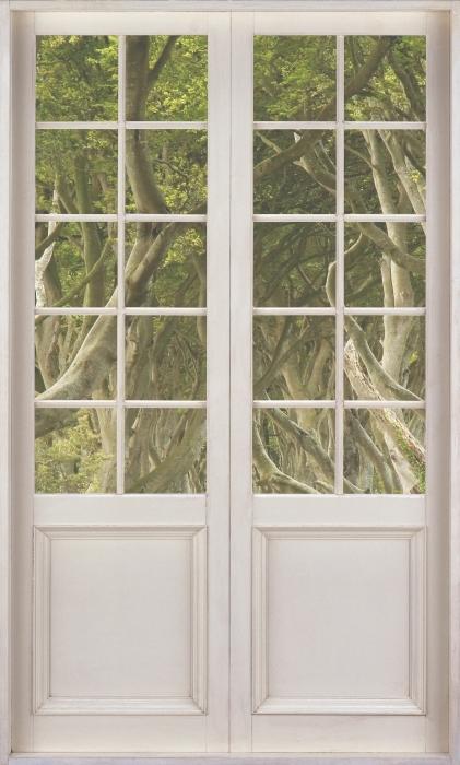 Vinyl-Fototapete Weiße Tür - Allee - Blick durch die Tür