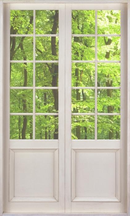 Fototapeta winylowa Białe drzwi - Las bukowy latem - Widok przez drzwi