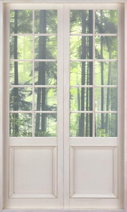 Papier peint vinyle Porte Blanche - Mystérieuse Forêt Sombre - La vue à travers la porte