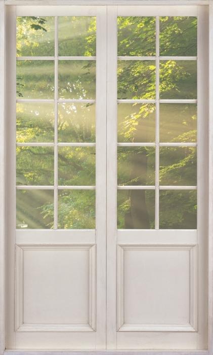 Fototapeta winylowa Białe drzwi - Promienie słońca w lesie - Widok przez drzwi