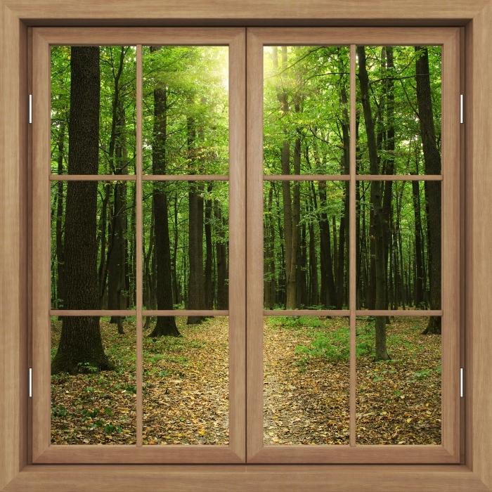 Fototapeta winylowa Okno brązowe zamknięte - Las w słońcu - Widok przez okno