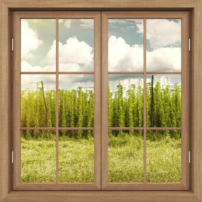 Fototapeta winylowa Okno brązowe zamknięte - Plantacja - Widok przez okno