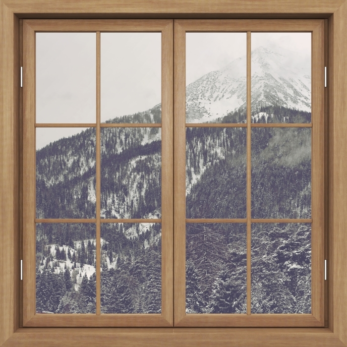 Brown window closed - Clouds Vinyl Wall Mural - View through the window