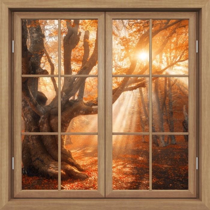 Vinyl-Fototapete Brown Fenster geschlossen - Bäume und Sonnenlicht - Blick durch das Fenster