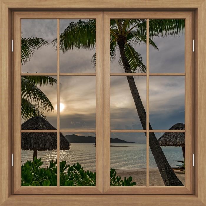 Fototapeta winylowa Okno brązowe zamknięte - Palmy - Widok przez okno