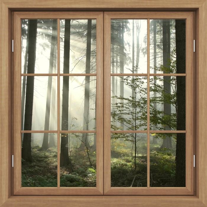 Vinyl-Fototapete Brown Fenster geschlossen - Nadelwald an einem nebligen Herbsttag - Blick durch das Fenster