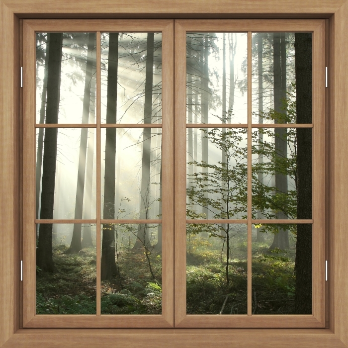 Brown window closed - coniferous forest on a misty autumn day Vinyl Wall Mural - View through the window