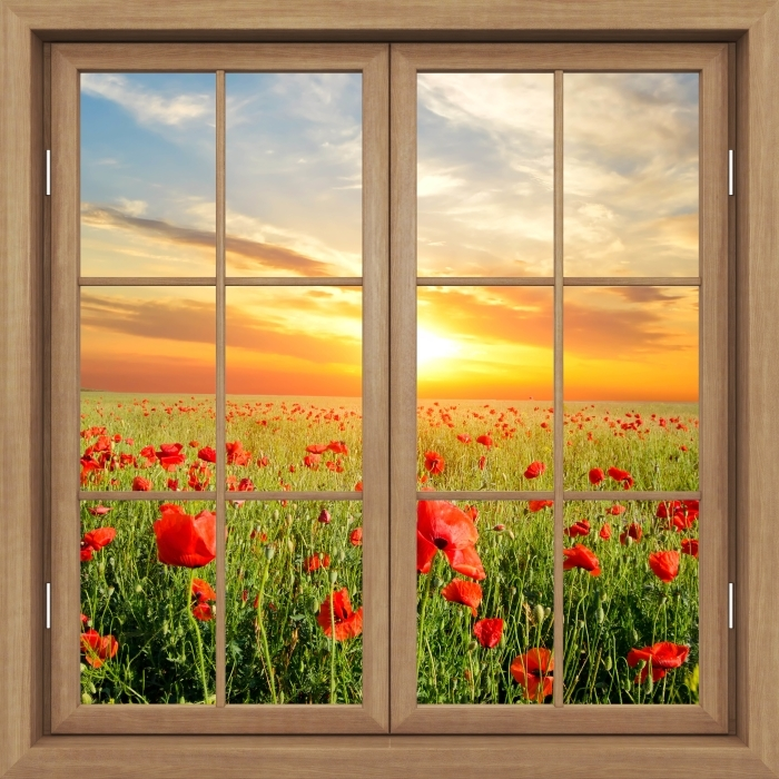 Brown window closed - Field of poppies Vinyl Wall Mural - View through the window