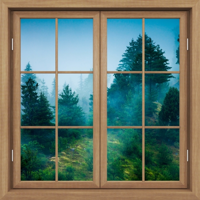 Vinyl-Fototapete Brown Fenster geschlossen - Nebel - Blick durch das Fenster
