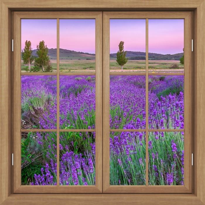 Fotomural Estándar Ventana de Brown cerrado - la puesta del sol. Hungría. - Vistas a través de la ventana