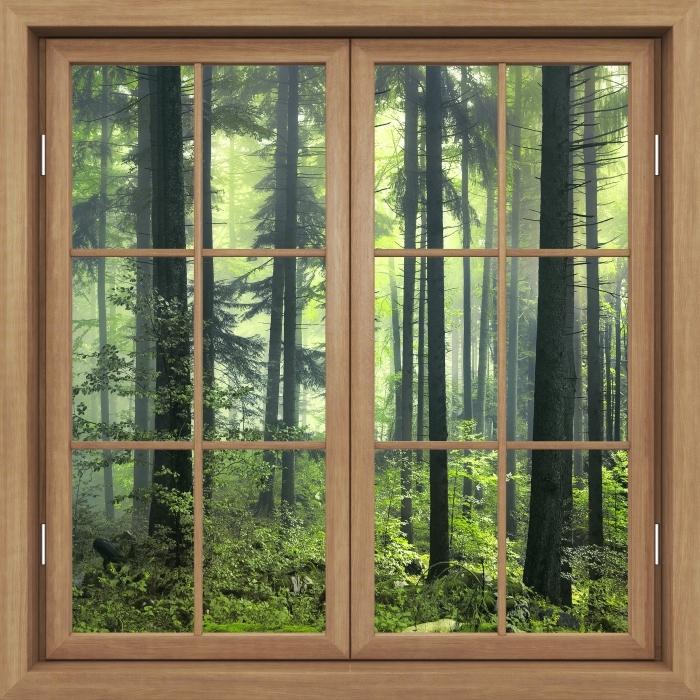 Fototapeta winylowa Okno brązowe zamknięte - Tajemniczy ciemny las - Widok przez okno