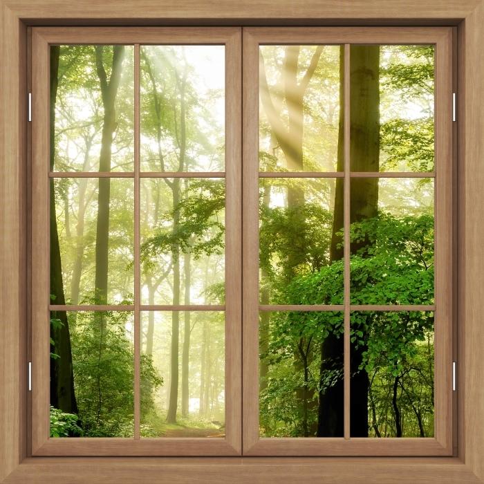 Fototapeta zmywalna Okno brązowe zamknięte - Las - Widok przez okno