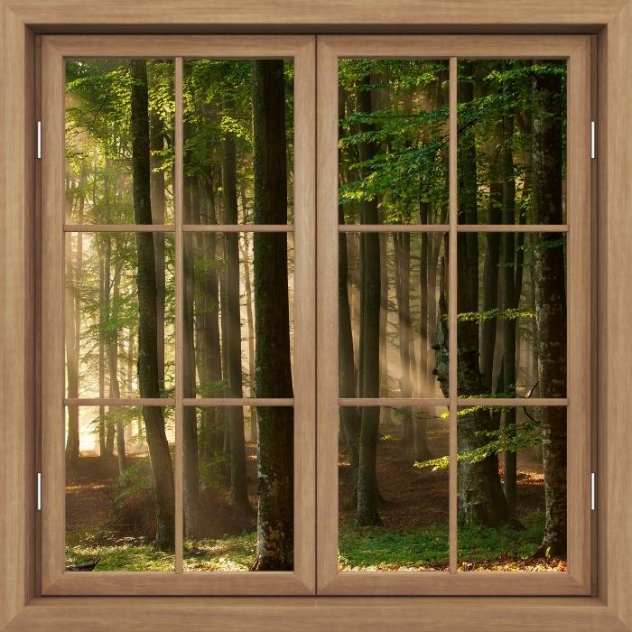 Fototapeta winylowa Okno brązowe zamknięte - Jesień - Widok przez okno