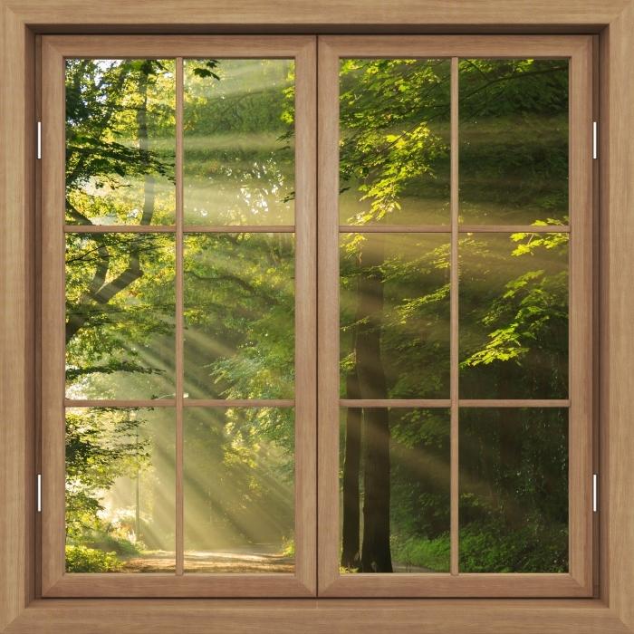Fototapeta winylowa Okno brązowe zamknięte - Promienie słońca w lesie - Widok przez okno