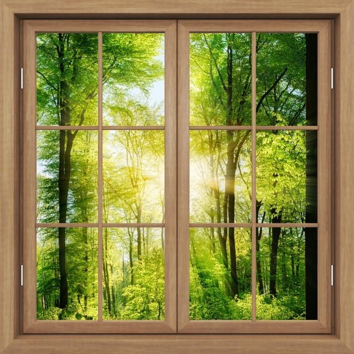 Fototapeta winylowa Okno brązowe zamknięte - Las - Widok przez okno