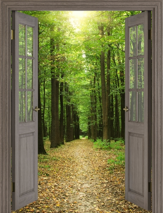 Fototapeta winylowa Brązowe drzwi - Las w słońcu - Widok przez drzwi