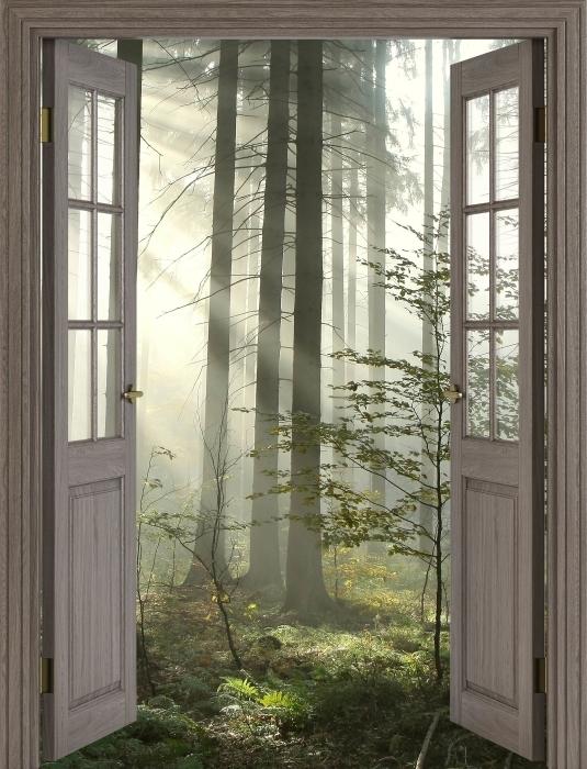 Fototapeta winylowa Brązowe drzwi - Las iglasty w mglisty dzień jesieni - Widok przez drzwi
