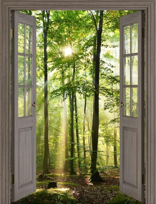 Fototapeta winylowa Brązowe drzwi - Las - Widok przez drzwi
