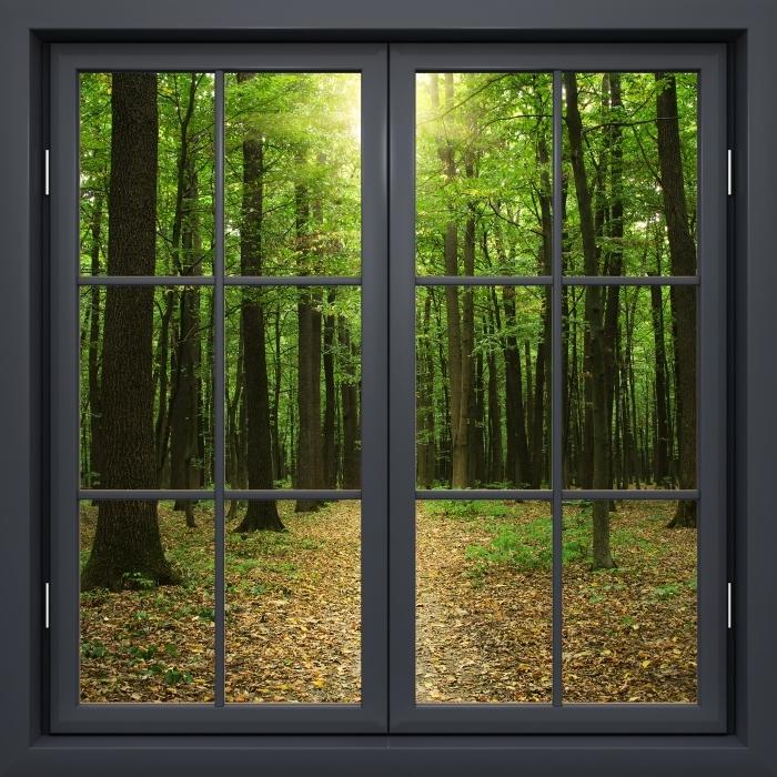 Papier peint vinyle Fenêtre Noire Fermée - Forêt Au Soleil - La vue à travers la fenêtre