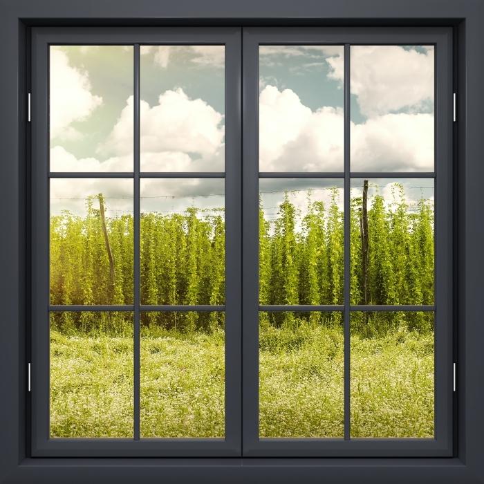 Papier peint vinyle Fenêtre Noire Fermée - Plantation - La vue à travers la fenêtre