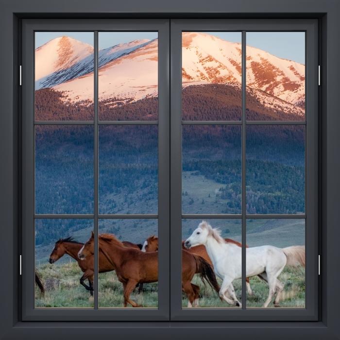 Papier peint vinyle Fenêtre Noire Fermée - Chevaux - La vue à travers la fenêtre