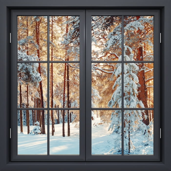 Fototapeta winylowa Okno czarne zamknięte - Sosny pokryte śniegiem - Widok przez okno