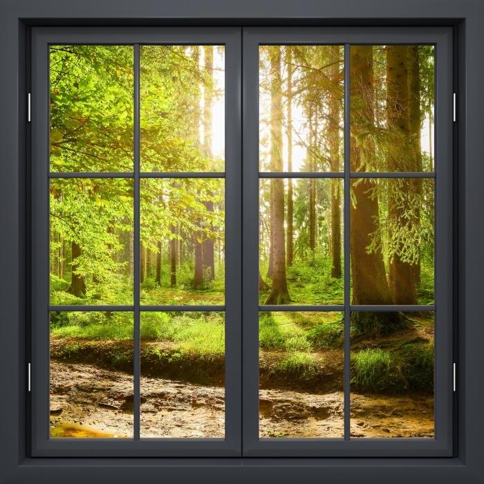 Fototapeta winylowa Okno czarne zamknięte - Las - Widok przez okno