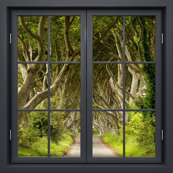 Vinyl-Fototapete Schwarz Fenster geschlossen - Allee - Blick durch das Fenster
