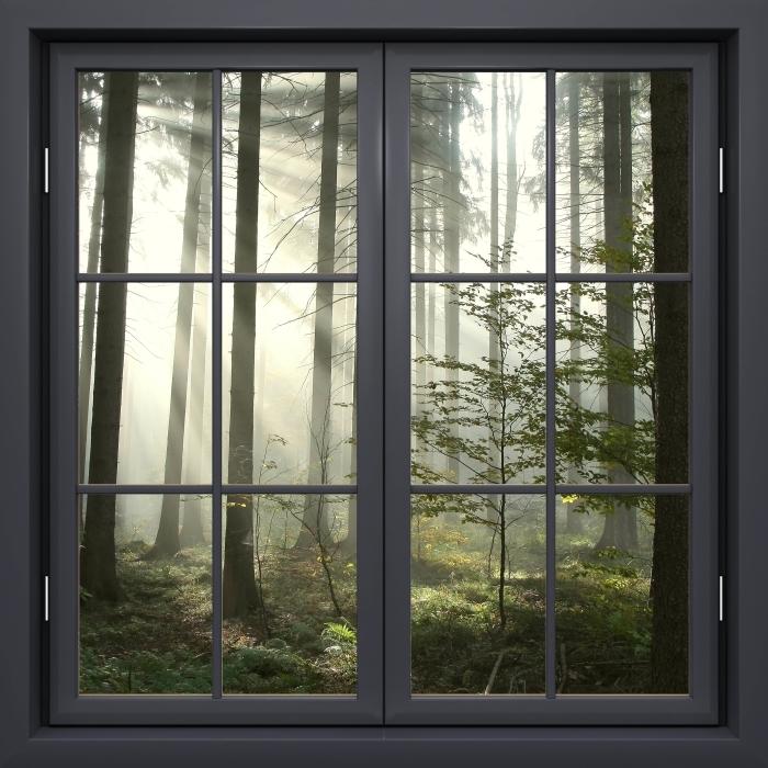 Papier peint vinyle Fenêtre Noire Fermée - Forêt De Conifères Un Jour D'Automne Brumeux - La vue à travers la fenêtre