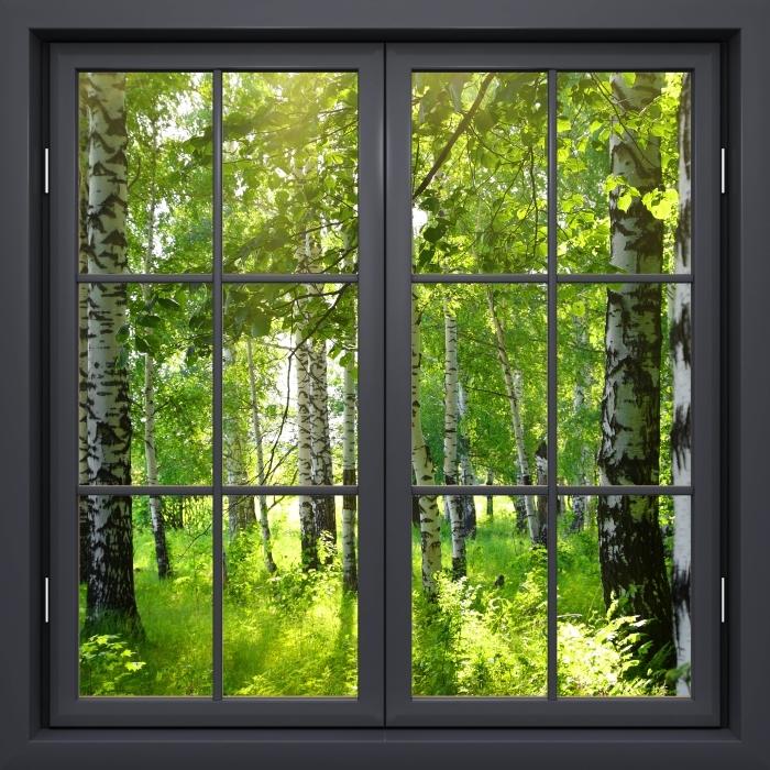 Fototapeta winylowa Okno czarne zamknięte - Lato. Brzozowe lasy. - Widok przez okno