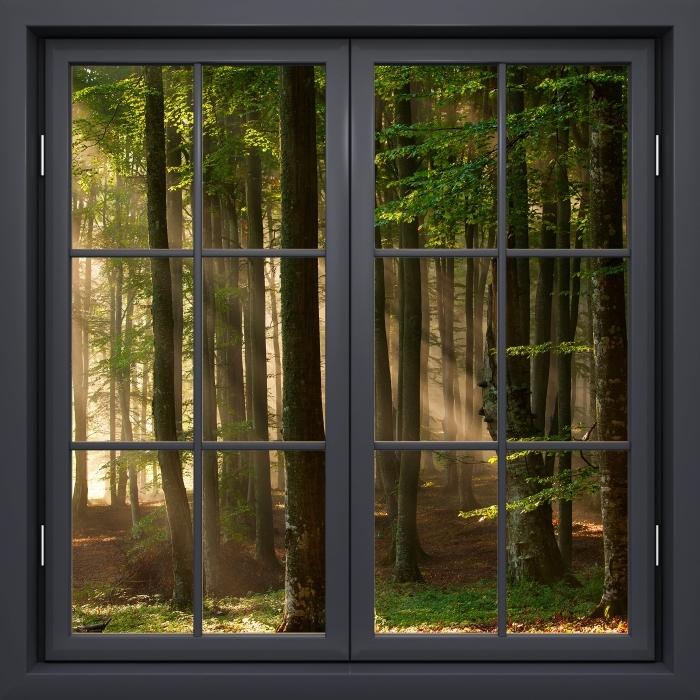 Papier peint vinyle Fenêtre Noire Fermée - Automne - La vue à travers la fenêtre