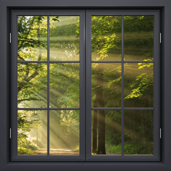Papier peint vinyle Fenêtre Noire Fermée - Rayons Du Soleil Dans La Forêt - La vue à travers la fenêtre