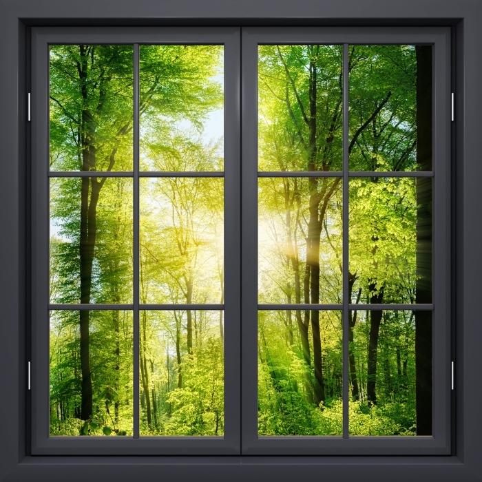 Papier peint vinyle Fenêtre Noire Fermée - Forêt - La vue à travers la fenêtre