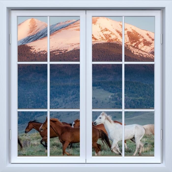 Fototapeta winylowa Okno białe zamknięte - Konie - Widok przez okno