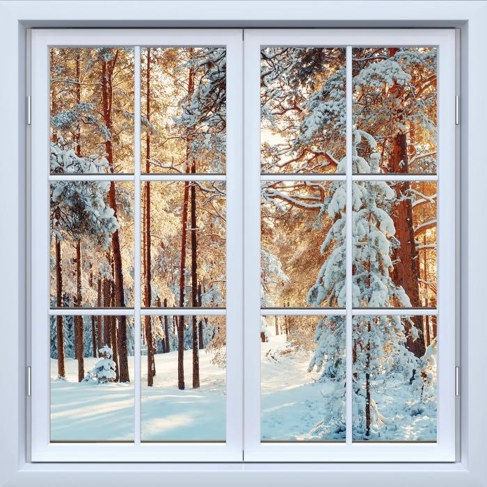 Papier peint vinyle Blanc fenêtre fermée - arbres de pin couvert de neige - La vue à travers la fenêtre