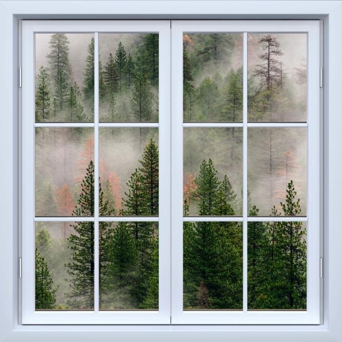 Vinyl-Fototapete Weiß Fenster geschlossen - Wald im Nebel - Blick durch das Fenster