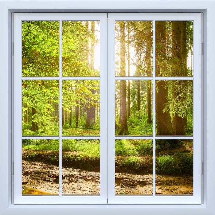 Fototapeta winylowa Okno białe zamknięte - Las - Widok przez okno
