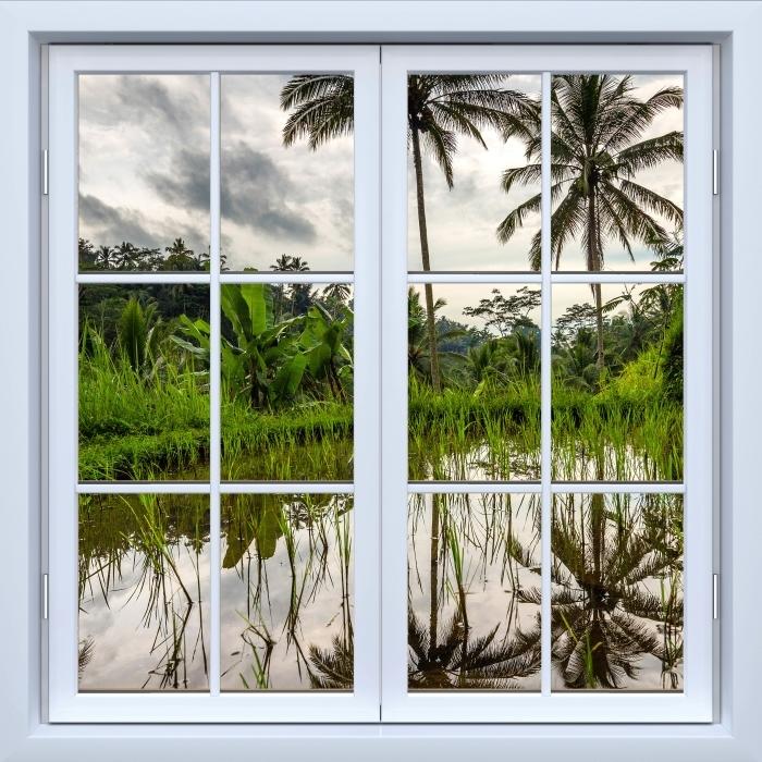 Vinyl-Fototapete Weiß geschlossene Fenster - Palma. Indonesien. - Blick durch das Fenster