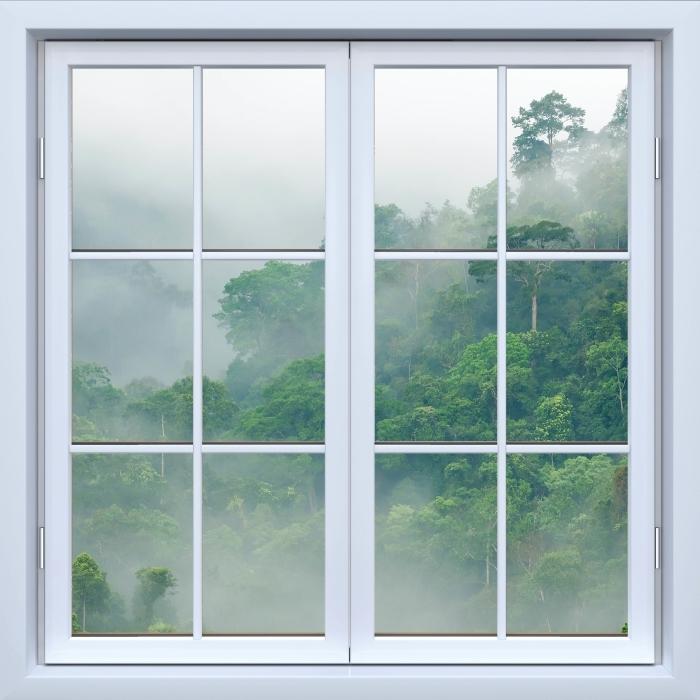 Papier peint vinyle Blanc fenêtre fermée - Rainforests - La vue à travers la fenêtre