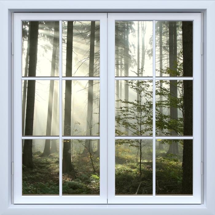 Fotomural Estándar Blanco ventana cerrada - bosques de coníferas en un día nublado de otoño - Vistas a través de la ventana
