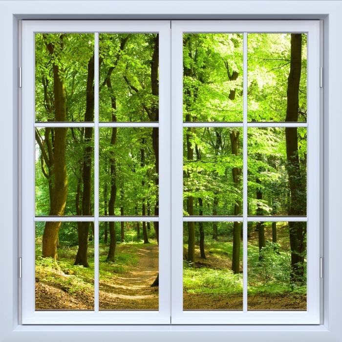 Papier peint vinyle Blanc fenêtre fermée - Forêt de hêtres dans l'été - La vue à travers la fenêtre