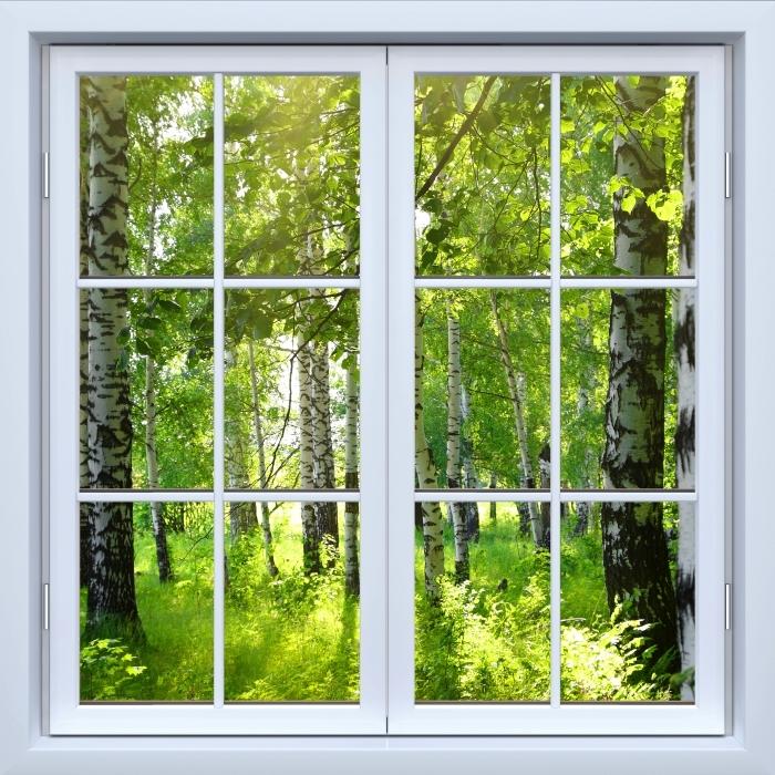 Fototapeta winylowa Okno białe zamknięte - Lato. Brzozowe lasy. - Widok przez okno