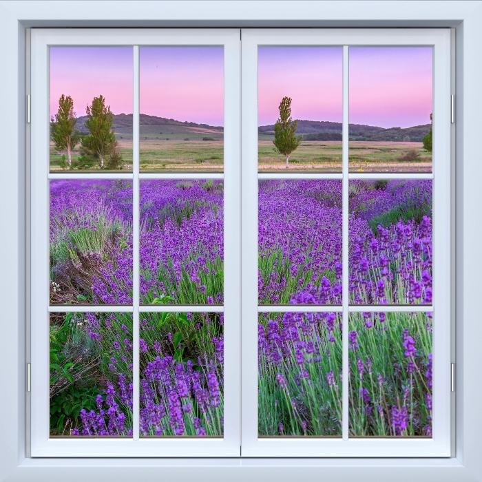 Vinyl-Fototapete Weiß geschlossen Fenster - Sonnenuntergang. Ungarn. - Blick durch das Fenster