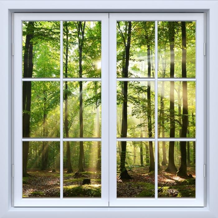 Papier peint vinyle Blanc fenêtre fermée - Forêt - La vue à travers la fenêtre