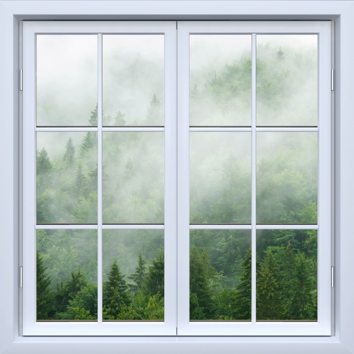White window closed - Forest Vinyl Wall Mural - View through the window