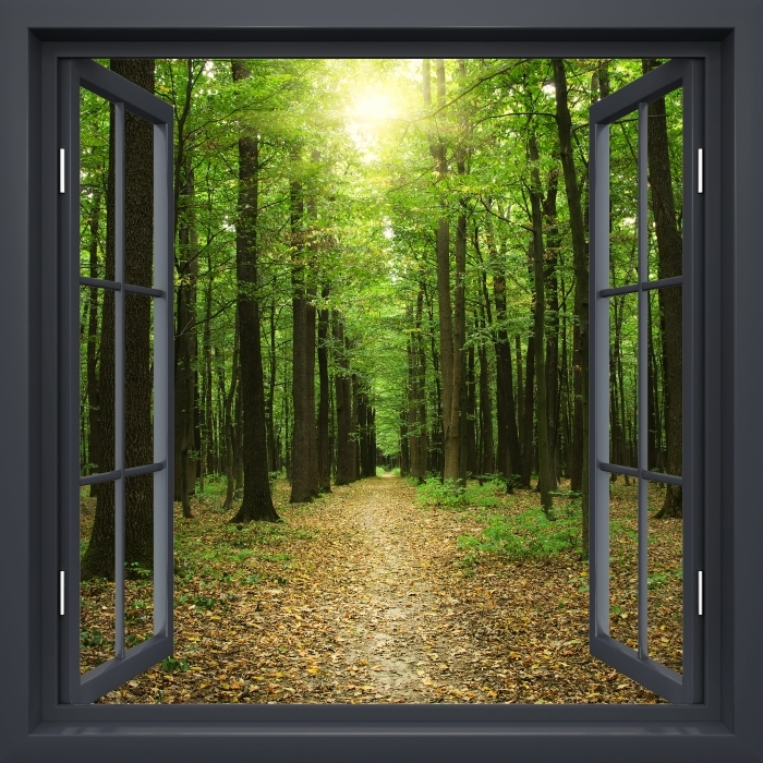 Black window open - Forest in the sun Vinyl Wall Mural - View through the window