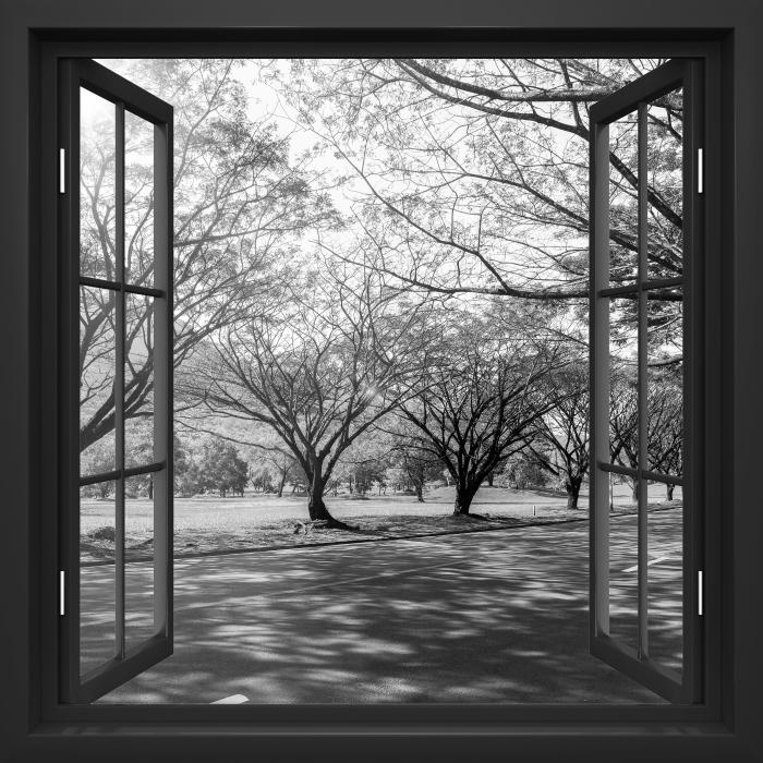 Fototapeta winylowa Okno czarne otwarte - Aleja. - Widok przez okno
