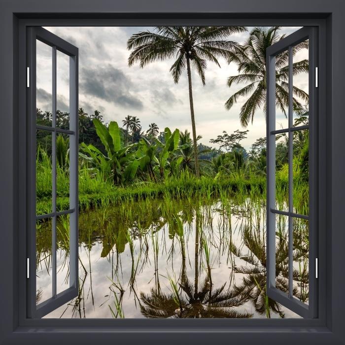Fototapeta winylowa Okno czarne otwarte - Palmy. Indonezja. - Widok przez okno